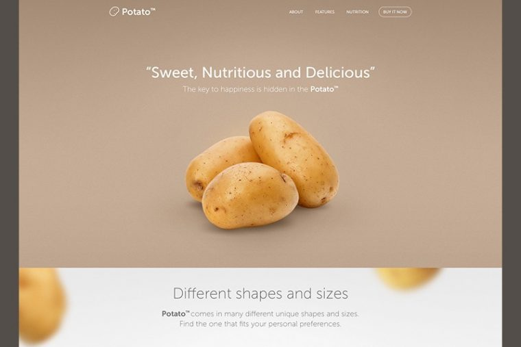 illustration of a landing page with a potato